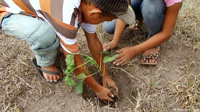 People planting tree in earth (Photo: Roberto M. Reis)