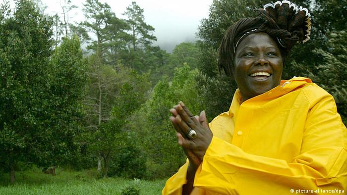 Wangari Maathai in the Newlands forest in Cape Town, South Africa