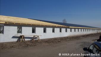 Першу чергу свинокомплексу планують ввести у експлуатацію уже влітку 2013 року