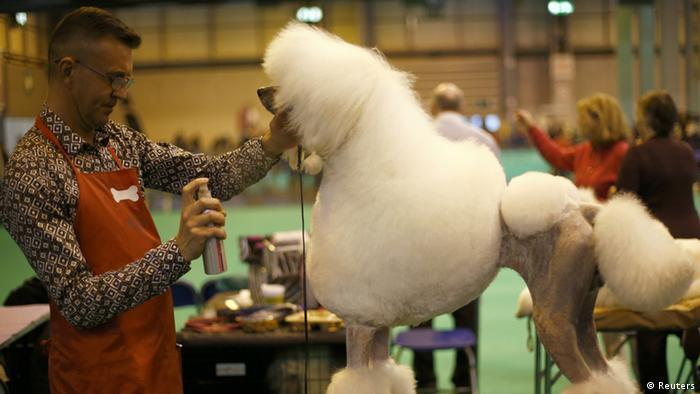 Crufts Hundeshow Birmingham 2013 (Reuters)