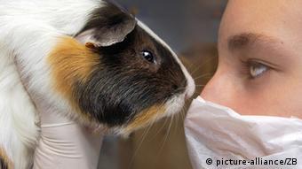 Problem testiranja na životinjama: rezultati se ne mogu uvijek primijeniti na ljude