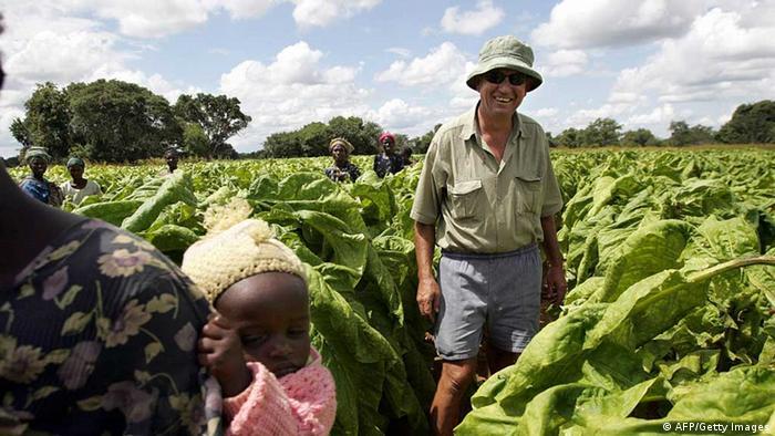 A white Zimbabwean-born tobacco farmer in Zambia