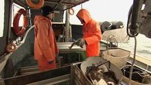 16.03.2013 DW DEUTSCHLAND HEUTE Fisch