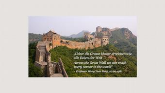 Infografik Bildergalerie Chinas Firewall Bild 09
