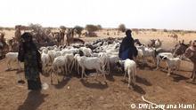 Frauen tränken ihre Ziegen an einem Brunnen in der Region Tanout, Provinz Zinder, Niger. Bild: DW/Larwana Hami, 20.03.2013, Region Tanout, Niger