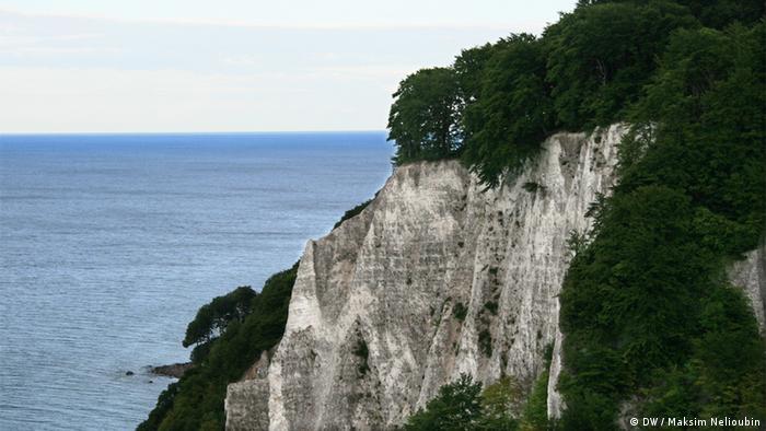 Меловые скалы (Kreidefelsen) на острове Рюген (Rügen). Фото: DW / Максим Нелюбин