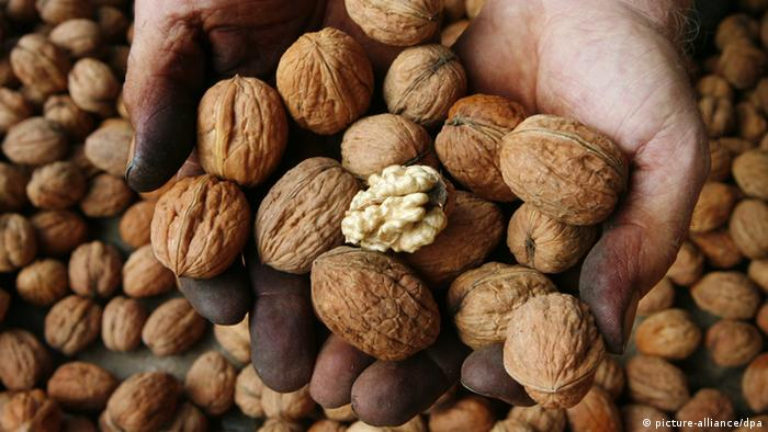 Walnuts allowed to fall off tree, German court rules