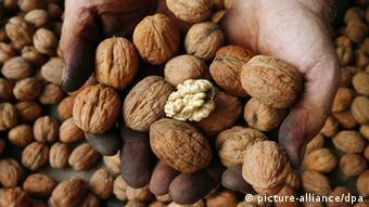 Walnuts. Copyright: dpa - Report.