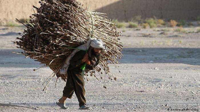 Ein alter Mann trägt schwere Last auf dem Rücken (Foto:dpa)