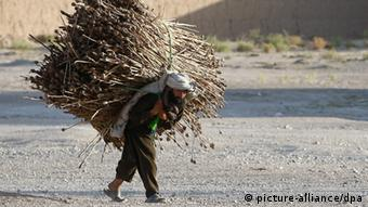 An elder Afghan man carries opium poppies EPA/TIAGO PETINGA +++(c) dpa - Bildfunk+++
