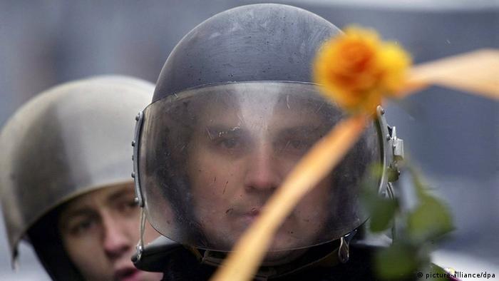 Ukrainische Polizisten mit Schutzhelmen bewehrt, schauen auf eine orangene Blume mit orangenem Band - der Symbolfarbe der ukrainischen Revolution 2004 (Foto: picture-alliance/dpa)