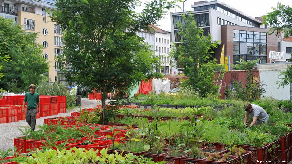 berlin eats its greens urban gardening on tour dw com. Black Bedroom Furniture Sets. Home Design Ideas