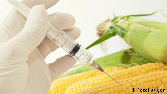 Європейці бояться генмодифікованих продуктів із США