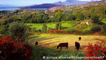 Glengarriff, Beara Peninsula, County Cork, Ireland