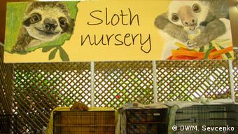 Sloth Nursery, Aviarios Sloth Sanctuary (photo: M. Sevcenko)