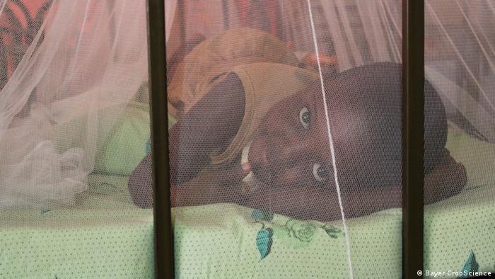 Ein Kind schläft unter dem Life-Net, einem mit Insektizid imprägnierten Moskitonetz (Foto: Bayer CropScience)