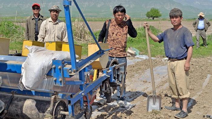 Китайские фермеры в Таджикистане