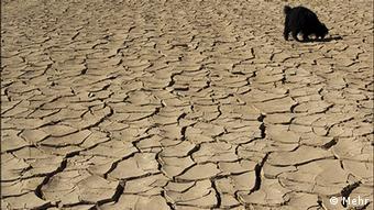 Dry soil (photo: MEHR)