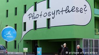 Die bemalte Fassade des Algenhauses auf der IBA Foto: Bodo Marks/dpa