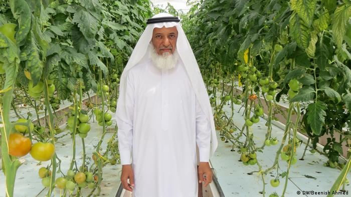 Jabber Al Mazroui, 55, in his aquaponics facility (Foto: Beenish Ahmed)