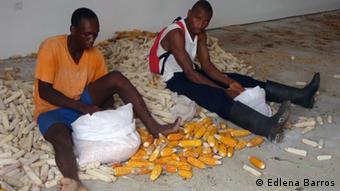 São Tomé e Príncipe Mais Farmer