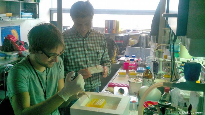 PhD student Petr Kasparek (left) and Dr Radislav Sedlacek (right) in their Prague lab (Photo: DW/Rob Cameron)