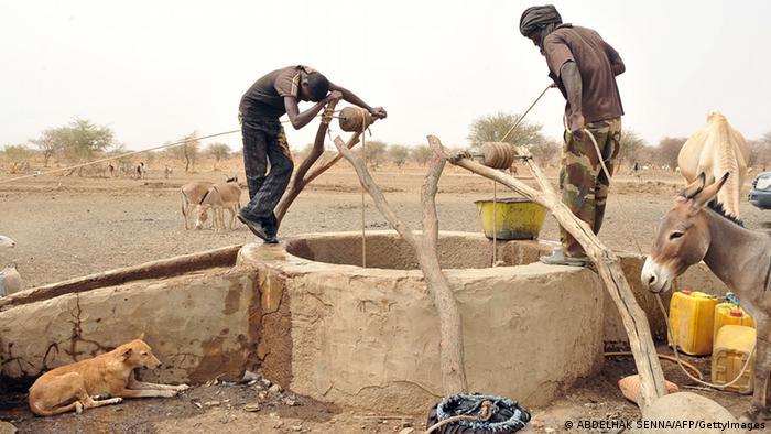 Dürre in Niger