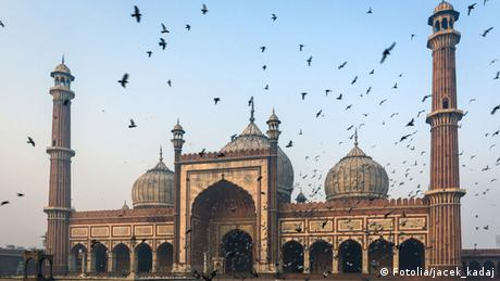 The Jama Masjid mosque in Delhi Photo: jacek_kadaj