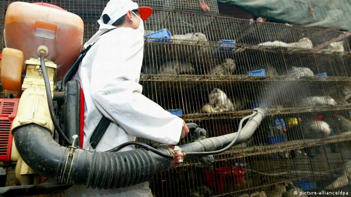 2003 kämpfte China mit der Sars-Epidemie. Unter anderem wurden Tiere desinfiziert, um die Ausbreitung einzudämmen