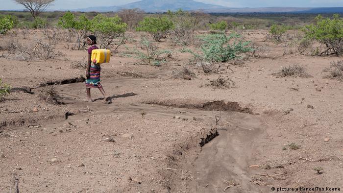 Kuraklık Afrika'nın birçok ülkesinde ciddi sorun
