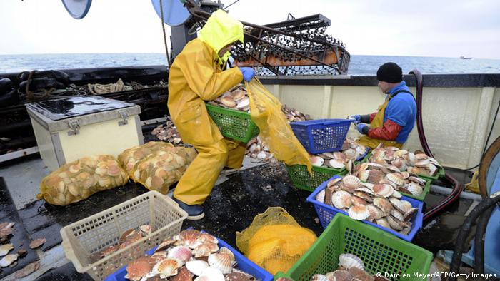 Fischer Fischtrawler Frankreich Archivbild 2011 (Damien Meyer/AFP/Getty Images)