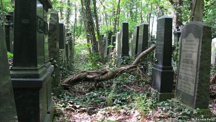 Weissensee, Europe's largest Jewish cemetery (Renate Pelzl)