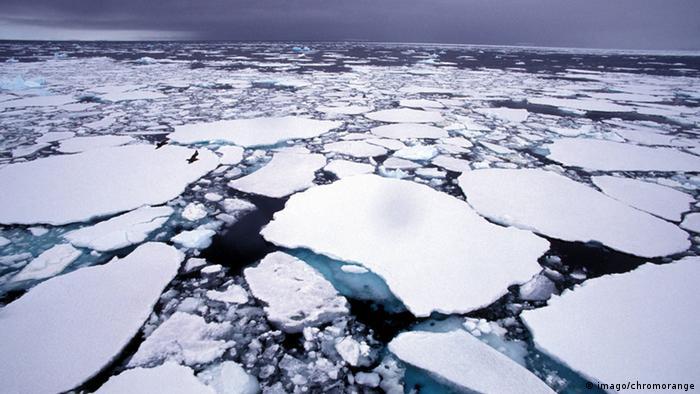 Icebergs near the Arctic Circle