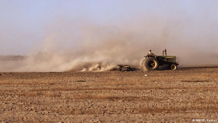 WWF - Ackerbau und Erosion