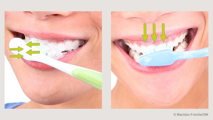 Bildergalerie Zähne putzen Putztechnik
