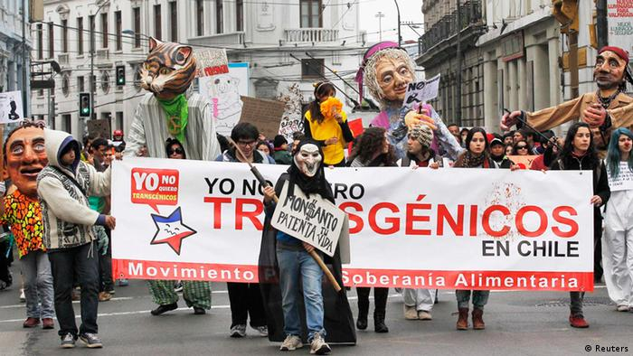 Monsanto Demonstration ANTI Gen-Soya Chile
