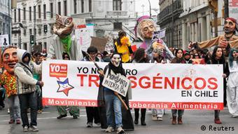 Демонстрації проти вирощування генетично модифікованої сої компанії Monsanto у Чилі у травні цього року