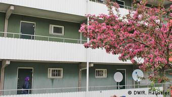 A conventional multi-story apartment building with white guardrails is partially obscured by a blossoming cherry tree on the right-hand side of the frame. (Photo: DW/Randi Häussler)