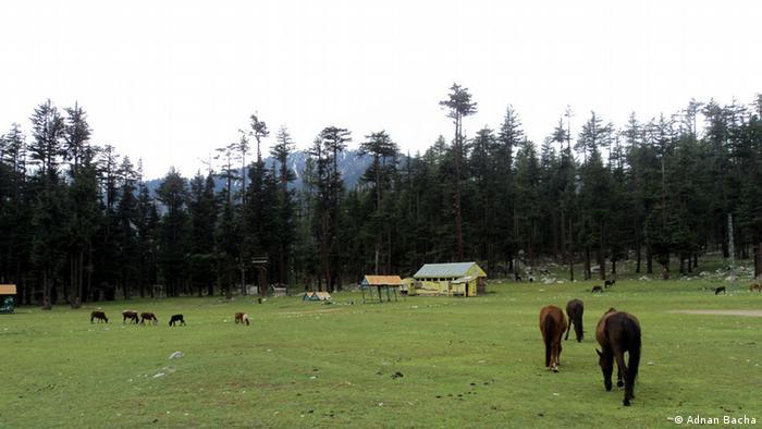 Bildergalerie Pakistan Swat (Adnan Bacha)