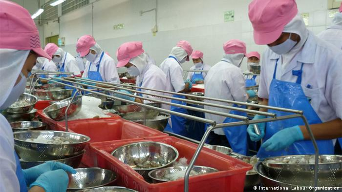 Workers sorting seafood at a processing plant in Thailand. (Photo: International Labour Organization/DW)