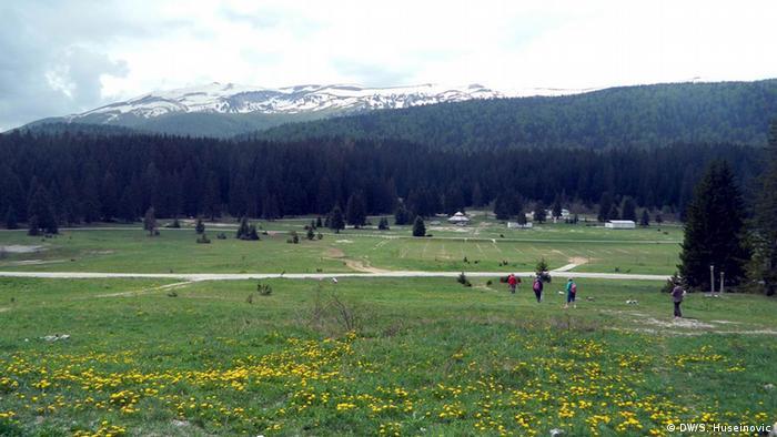Ravnica, šuma, planine u Bosni i Hercegovini