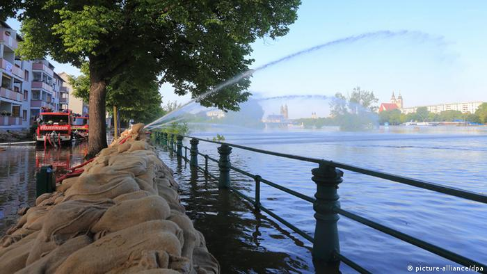 The Elbe waters flood a walkway in Magdeburg (Photo: Jens Wolf)