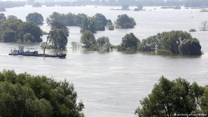 Flooded area near Lauenburg in the north of Germany Photo: Carsten Rehder/dpa