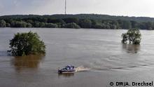 Elbe bei Lenzen in Brandenburg. DW/Alexander Drechsel Juni 2013