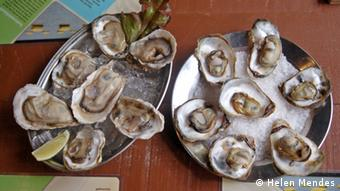 Oysters on a platter (photo: Helen Mendes)