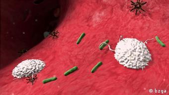 virusi u tijelu tratamentul sau expulzarea viermilor
