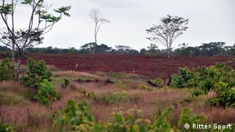 Brachland zur Aufforstung. Hier soll die Kakao-Plantage von Ritter Sport in Nicaragua entstehen (Foto: Ritter Sport)