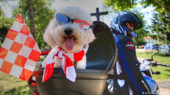 A biker with his dog dressed in Croatian national colours and the EU symbol on dog's glasses visits graveyard where Croatian soldiers are buried, who killed in the Serbo-Croatian war from 1991-1995, on the outskirts Zagreb, Croatia on 25 June 2011. Croatia celebrates 20 years of independence on 25 June 2011, after it broke away from the former Yugoslavia.