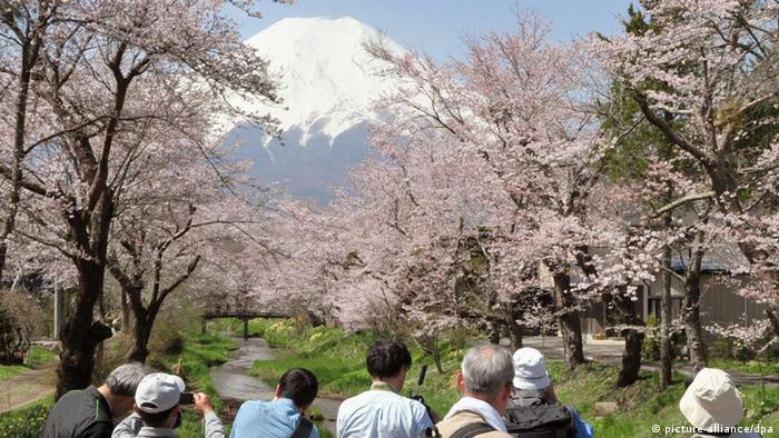 Tourists enjoy the view of white-capped Mt. Fuji