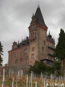 Замок Родек Бакай купив разом з виноградниками і фруктовим садом. Купівля оформлена на панамську Stuckeley Corporation, повідомляє Badische Zeitung.